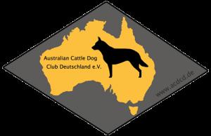 logo acdcd